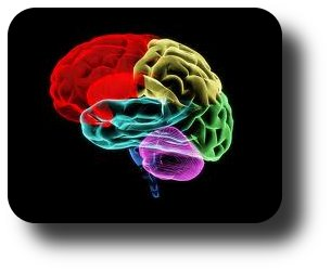 influences of imagination on human mind Fear is a human emotion that is triggered by a perceived threat it is a basic survival mechanism that signals our bodies to respond to danger with a fight or flight response.
